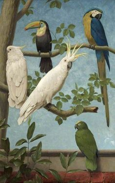 Henry Stacy Marks - 1829 1898 - Cockatoo's , a Tucan, an Amazon parrot and a Macaw - Odd but beautiful bird compositions from the Victorian / British Arts & Crafts period, from a series of 12 painted panels for an 1890's drawing room. Eaton Hall, Cheshire