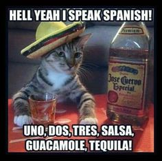 ☺☺☺ Hell Yeah I Can Speak Spanish! Uno, Dos, Tres, Salsa, Guacamole and Tequila! ☺☺☺