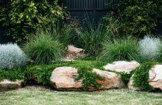 The new look Aussie backyard - Native Plant Project - Outdoor living Backyard Garden Design, Garden Landscape Design, Backyard Landscaping, Backyard Ideas, Australian Garden Design, Australian Native Garden, Back Gardens, Outdoor Gardens, Coastal Gardens