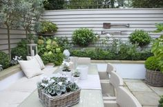 Mooie combinatie lichtkleurige tuinafscheiding en planten/boompjes.