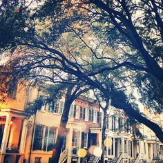 Wouldn't you like to live here? Savannah, GA  My home was Savannah for many years.