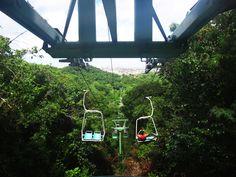 O que você acha de dar uma volta de teleférico em meio a mata atlântica com um visual da cidade e do litoral de Aracaju? Então você precisa conhecer o Parque da Cidade de Aracaju.  http://www.vidadeturista.com/atracoes/parque-da-cidade-de-aracaju-aracaju-se.html  #aracaju #sergipe #BlogueirosEmAracaju #ap