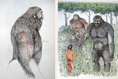 28 Best Bigfoot And Native Americans Images In 2017 Cryptozoology