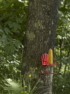 How cool is this?? A-maize-ing Squirrel Feeder | Gardener's Supply