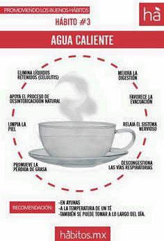 Beneficios agua caliente en ayunas de hábitos.mx