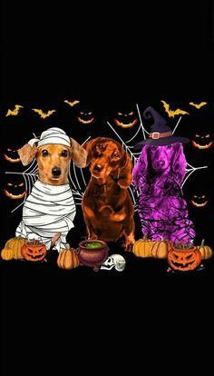 Halloween 2, Dachshunds, Movie Posters, Movies, Art, Art Background, Dachshund, Films, Weenie Dogs