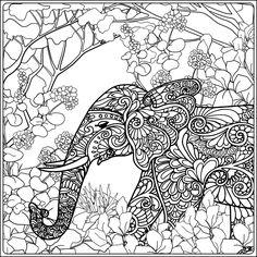 Board Colour Elephants Adult Coloring Crayon Art Color Colors Elephant Sign