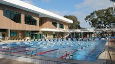 Hawthorn Aquatic & Leisure Centre > Sport + Leisure > dwp|suters Centre, Community, Australia, Places, Sports, Life, Hs Sports, Lugares, Sport
