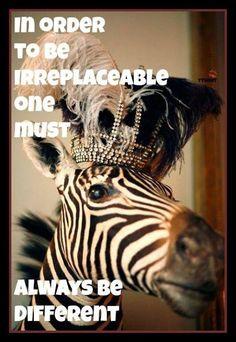 Crowns are not just for princesses...vir my zoe meisiekind wat mal is oor zebras en prinsesse!