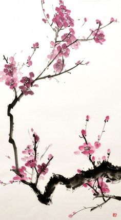Alexandra Bezmenova - Sumi-e - Sakur Chinese brush painting Sakura Painting, Japanese Ink Painting, Sumi E Painting, Cherry Blossom Painting, Japanese Watercolor, Japanese Artwork, Chinese Painting Flowers, Cherry Blossoms, Watercolor Flowers
