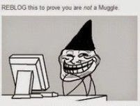 I'm not a muggle! Harry Potter Part 2, Harry Potter Jokes, Harry Potter Fandom, Hogwarts Letter, Fantastic Beasts And Where, Deathly Hallows, Geek Culture, Ravenclaw, Book Worms