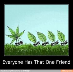 I am that friend...a friend with weed is a friend indeed...lol