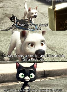 missing bolt poster from disney movie bolt - Yahoo Search Results Yahoo Image Search Results Disney Pixar, Disney Dogs, Disney Nerd, Disney Memes, Disney Quotes, Disney And Dreamworks, Disney Animation, Disney Magic, Disney Fanatic