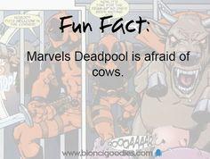 geek fun facts :)