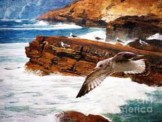 I Stand Amidst the Breakers - by Lianne Schneider Digital painting with overlaid textures from a composite reference photo. At Fine Art America