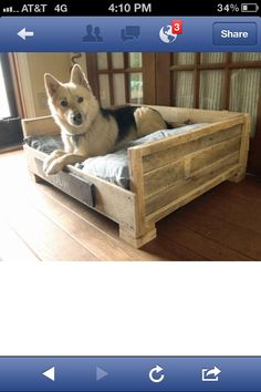 From pallets...