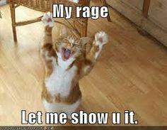 Rage cat.