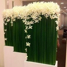 Office arrangement with Dendrobium Orchids and Steel Grass Arte Floral, Deco Floral, Ikebana, Flower Decorations, Wedding Decorations, Flower Centerpieces, Decoration Buffet, Hotel Flowers, Corporate Flowers