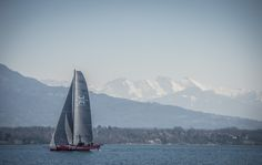 Team tilt sailing on Lake Geneva, view over the Mont Blanc