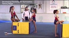 Glute/hip/hip flexor stretch