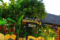 5 Best Beach Bars in Jamaica Negril Jamaica, Montego Bay, Tiki Hut, Island Tour, Beach Bars, Beautiful Islands, Vacation Destinations, Spring Break, Rum