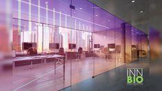 Color y alegría para este espacio creativo!!!! 🟣🔴🟠🟡🟢🔵🟣 . . #diseñodeinteriores #diseñodeespacios #diseño #oficinismo #interiordesign #interiorismo #architecture #glass #sandblasting Interiores Design, Ideas, Interior Design, Creativity, Home, Colors, Thoughts