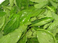 FREEZING BASIL: As expensive as fresh basil is in the stores, especially in the winter, pesto is in the stores, you wouldn't know that you can actually freeze the basil from your own garden and use it in the winter in cooking.  It works great for any recipe that calls for fresh basil and is cooked.