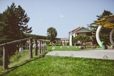 Fotograf Nunta Cluj   Ami si Alex Love At First Sight, Romania, Wedding Photography, Mansions, House Styles, Outdoor, Beautiful, Outdoors, Manor Houses