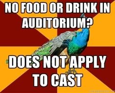 thespian peacock: Oh my goodness, there's always someone who brings a small meal with them to rehearsal! Theatre Jokes, Drama Theatre, Theatre Problems, Theatre Nerds, Music Theater, Broadway Theatre, Musicals Broadway, Choir, Acting