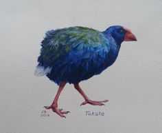Takahe  watercolour Jane Sinclair Bird Art, Pet Birds, New Zealand, Nativity, Watercolor, Projects, Painting, Animals, Country