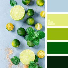 Lime and blue color palette Palettes Color, Green Colour Palette, Color Palate, Colour Schemes, Green Colors, Color Combinations, Colours, Green Pallete, Mint Color