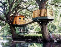 A very cool tree-house with the benefit of both an open air tree-house and a roofed one!