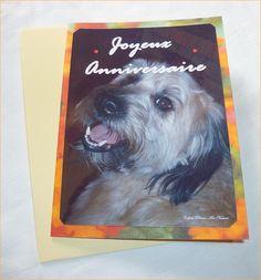"""Carte double""""Joyeux anniversaire""""réalisée à partir de photos d'animaux et de fleurs de Céline Photos : Cartes par celinephotosartnature"""