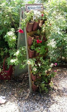 Upcycling old shutters in the garden
