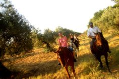 Walk with horses