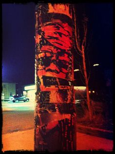 KONY 2012 Spotted in Denver, CO on East Colfax