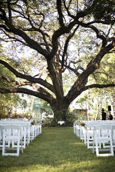 Houston Wedding- Yes Please!