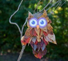 blader uiltje
