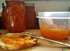 Instant Pot Orange Marmalade Recipe