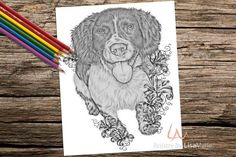 Coloring Book page Coloring Pages Instant by ArtistrybyLisaMarie