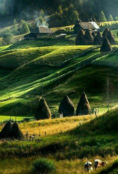 Landscape of Maramures, Romania by Constantin Hurghea Wonderful Places, Beautiful Places, Visit Romania, Romania Travel, Little Paris, Bucharest Romania, Voyage Europe, Roadtrip, Beautiful Landscapes