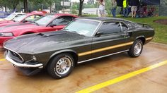Photo Gallery: 2013 All Mustang Show - OnAllCylinders