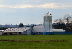 Pitt Meadows BC