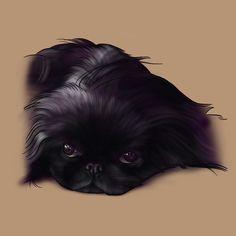 背景薄オレンジバージョン Drawings, Dogs, Animals, Animales, Animaux, Pet Dogs, Sketches, Doggies, Animal