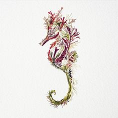 Artist Helen Ahpornsiri continues to explore the possibilities of pressed plant life in her ongoing series of wildlife illustrations that depict insects, animals, and other creatures.
