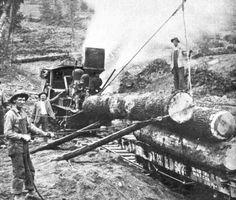 Lumberjacks, Rails and Trains