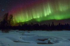 Aurora borealis / Northen lights at Pon'goma village, White Sea, Karelia