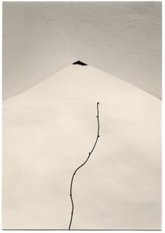 Inspiration // Masao Yamamoto Photography Gallery, Fine Art Photography, Asian Photography, Photography Series, Contemporary Photography, Abstract Photography, Photography Women, Vintage Photography, Amazing Photography