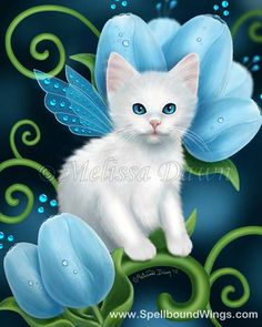 Fairy cat ~ Melissa Dawn