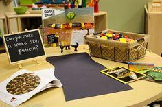 "Incorporating Reggio methods in a ""traditional"" school setting"